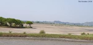 The destruction of Panje wetlands in Uran, Navi Mumbai, in less than six months.