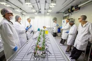 Photos: Canadian students learn to grow pot at cannabis college