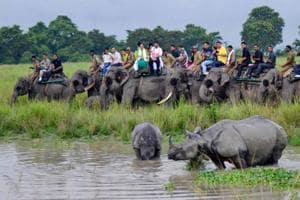 Tourists watch a one horned rhino with her calf as they cool off, during an elephant safari in Kaziranga National Park in Bokakhat district of Assam.