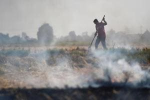 Stubble burning begins, Delhi holds breath as pollution season approaches