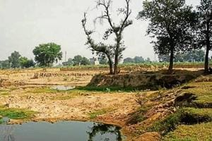The soil is worth around Rs 40 lakh as per a revenue official.