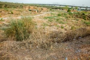 The campaign to save the Aravalli Biodiversity Park (ABDP) continued to gain momentum on October 30.