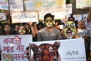 It is the depletion of forests that is bringing tigers more and more into contact with human civilisation.