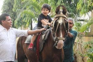 Taimur Ali Khan tries his hand at horse riding.