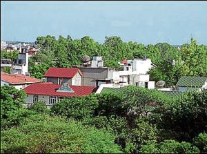 ILLEGAL OCCUPANTS : A view of plush bungalows in the Sainik Farms area in the capital