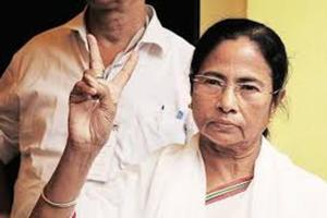Representatives of a few Bengali cultural organisations from Assam met West Bengal chief minister Mamata Banerjee in Siliguri on November 1 before the Tinsukia killings and requested her to field candidates in all the 14 Lok Sabha seats in the state.