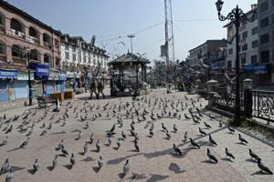 Indian paramilitary troopers patrol past pigeons during the first day of a strike called by Kashmiri separatists against attempts to revoke articles 35A and 370 of the state constitution, in Srinagar on August 30, 2018.
