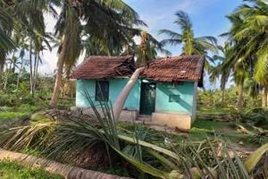 A fallen coconut tree due to the cyclone Gaja damages a house in Anaikkadu of Thanjavur district, Tamil Nadu (File Photo)