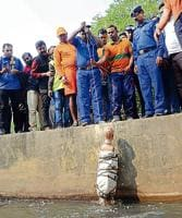 A human dummy being dropped into the drain to locate the missing boy, in Patna on Tuesday