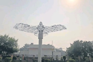 The plaza in central Delhi, right outside the Mandi House Metro station, has an art installation -- a giant eagle made of wires.