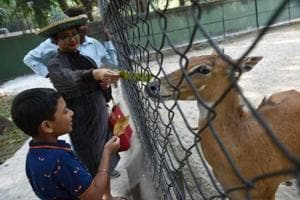 Whistling torment for animals in zoo; Bengal govt to impose fine shortly