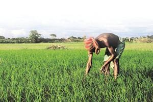 Though the agrarian crisis is a decades-long issue, it is in the past few years that several such farmers' protests have occurred, including in Mandsaur in Madhya Pradesh and Delhi.