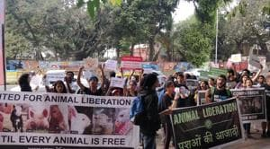 'Animal liberation', 'Stop animal cruelty' and 'I love animals — Going vegan makes sense', were some of the placards and posters displayed at the event.