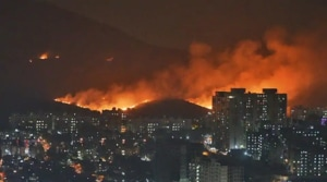 Major fire erupted behind Infinity IT Park in Mumbai