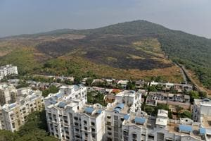 We may not ever know the extent to which the fire affected the Aarey colony, the forest taken from the Sanjay Gandhi National Park but not designated as a forest, for there is little clarity from the Maharashtra government.