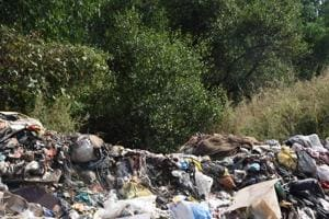The HC, in its order, had said dumping of debris or garbage is prohibited within 50-metre buffer area of mangrove trees and the state needs to protect such zones at all costs.