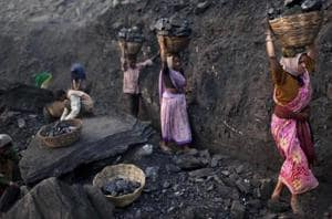 Thirteen miners were feared dead after an illegal coal mine they were digging collapsed on them in Meghalaya's coal-rich East Jaintia Hills, an area where illegal mining is rife and a National Green Tribunal ban on such activities has been in place for four years.