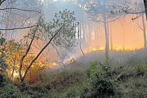 Officials put the beginning of forest fire season in Uttarakhand around the middle of February and say it lasts until the end of June.