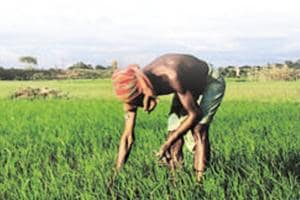 Short-lived solutions, like farm-loan waivers, can make a bad problem worse, since they don't address underlying issues.