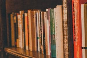 5 books that are releasing in January 2019, that are worthy of a read.
