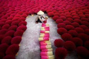 Photos: Vietnam's incense village blazes pink ahead of lunar new year