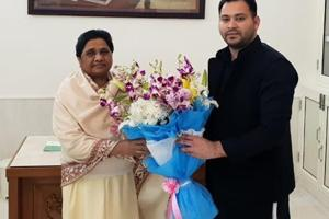 Tejashwi Prasad Yadav met Bahujan Samaj Party (BSP) chief Mayawati in Lucknow on Sunday to congratulate her on stitching an alliance with the Samajwadi Party for the coming Lok Sabha elections.