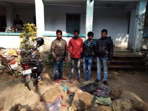 The four youths from Sultanpur, Uttar Pradesh, with the sacks that contained 689 flapshelled turtles.