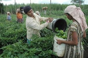 The Mahatma Gandhi National Rural Employment Generation Scheme, the Centre's biggest welfare programme, may see its annual budget touch Rs 60,0000 crore, an increase of Rs 5,000 crore from last year.