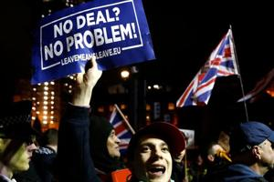Pro-Brexit protesters demonstrate outside the Houses of Parliament in London, Britain, January 15, 2019.
