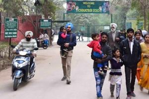 Chandigarh, India January 20: Visitors come out from Chattbir Zoo after it was closed as a man was mauled to death by a pair of lions after entering their enclosure on Sunday, January 20, 2019. (HT Photo/Ravi Kumar)