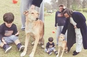 Kareena Kapoor, Saif Ali Khan play with son Taimur in a park.