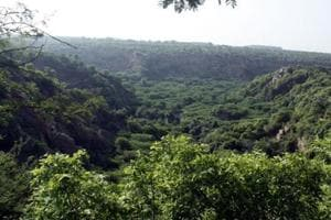 Environmentalists in Gurugram and Faridabad — which comprise 26,000 acres of Punjab Land Preservation-notified land in Aravallis — expressed relief at the Supreme Court's strongly worded response to the  PLPA amendment bill on Friday.  (Photo by Manoj Kumar/ Hindustan Times)