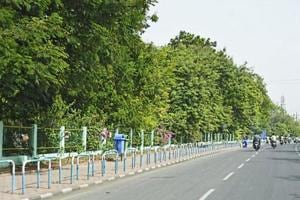 Indore gets 'cleanest city' tag for third straight year