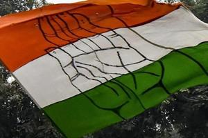 New Delhi: A Congress party supporter waves party flag after party
