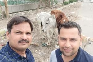 Under this initiative, citizens of Noida and Greater Noida are being encouraged to click a selfie with any stray bovine spotted by them on roads, and post the picture along with location details on microblogging website Twitter, with the hashtag #selfiewithstraycow