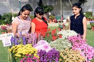 Soon, residents will be expected to inform the Lucknow Municipal Corporation (LMC) and get its permission if they intend to host an outdoor event where a gathering of 100 or more people is likely.