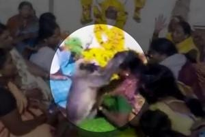 Video: Monkey consoles mourners at a funeral in Karnataka