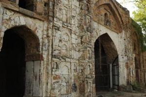 Heritage sites in Gurugram turn haven for monkeys