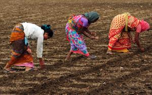 Ease of doing business, ease of living should apply to farmers too, says finance minister