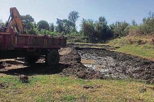 Vasai resident gets 3 booked for razing 3,000 mangroves