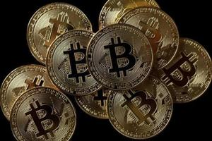 How investors are using software algorithms to make sense of crypto chaos