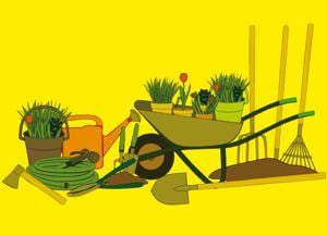 Humour: A brown thumb's guide to gardening