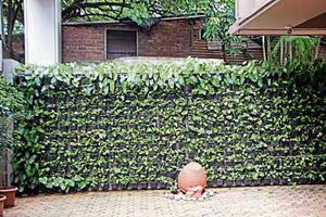 Solar energy, vertical gardens, waste management: Mumbai college teaches green lessons to its students