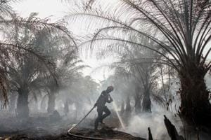 Photos: Indonesians choked by forest fire haze while Malaysia fumes