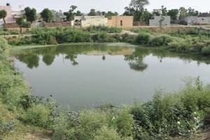 Beaten up for fishing in relative's pond, elderly man dies in Bengal village