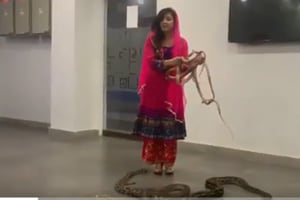 Pak singer Rabi Pirzada threatens PM Modi with snakes, crocodiles; fined