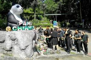 Chinese team in Thailand to probe celebrity panda's death