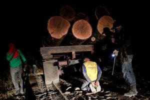 Photos: Amazon forest guardians stalk illegal loggers, fight fire with fire