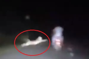 Leopard pounces on bikers, misses by inches- Heart-stopping video captured