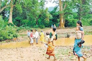 Don't jeopardise forests for mining